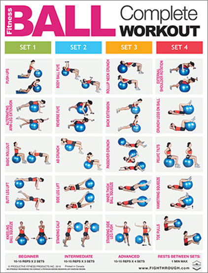 FITNESS BALL Complete Body Workout Professional Fitness Wall Chart Poster - Productive Fitness/Fighthrough