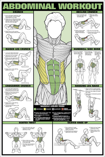 Abdominal Core Workout Professional Fitness Instructional Wall Chart Poster - Fitnus Corp.