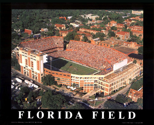 "Florida Field (The Swamp) ""From Above"" Premium Poster Print - Aerial Views"