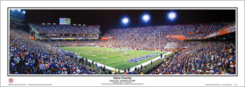 "Florida Gators ""Gator Country"" Griffin Stadium Game Night Panoramic Poster - Everlasting Images"