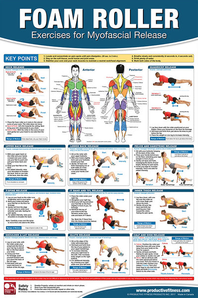 Foam Roller Exercises for Myofascial Release Fitness Gym Physiotherapy Wall Chart Poster - PFP