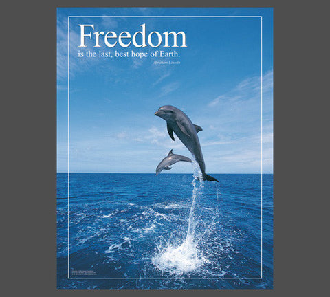 "Soaring Dolphins ""Freedom"" (Abraham Lincoln Quote) Inspirational Motivational Poster - Jaguar"