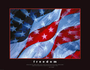 "American Flag ""Freedom"" (JFK Quote) Premium Poster Print - Eurographics Inc."