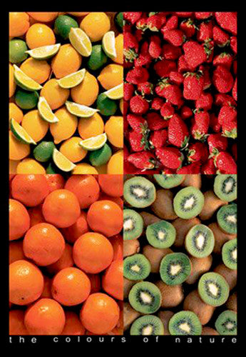 "Five Fruits ""The Colours of Nature"" Food Kitchen Poster - Eurographics Inc."