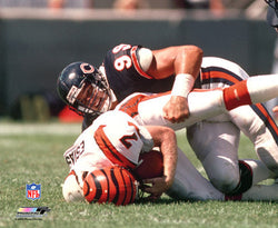"Dan Hampton ""Classic Sack"" c.1985 Chicago Bears Poster Print - Photofile"