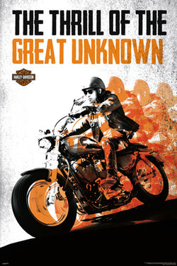 "Harley-Davidson Motorcycles ""The Great Unknown"" Poster - Pyramid America"
