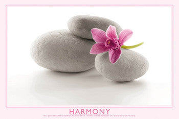 "Flower and Stone ""Harmony"" Inspirational Poster - Wizard & Genius"