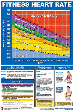 Fitness Heart Rate Professional Fitness Wall Chart Poster - Productive Fitness Corp.