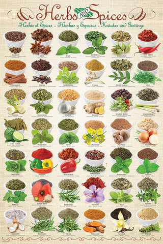 The Herbs and Spices Poster (42 Cooking Ingredients) - Eurographics Inc.