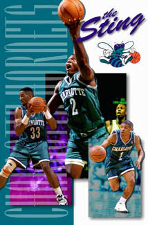 "Charlotte Hornets ""The Sting"" Vintage NBA Poster - Costacos 1994"