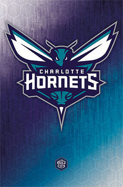 Charlotte Hornets NBA Basketball Official Team Logo Wall Poster - Trends International