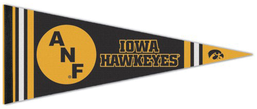 "Iowa Hawkeyes ""ANF"" NCAA College Vault 1980s-Style Premium Felt Collector's Pennant - Wincraft Inc."