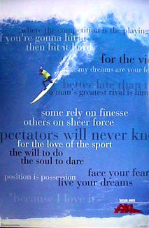 "Taylor Knox ""For the Love of Sport"" Surfing Poster - No Fear 1998"