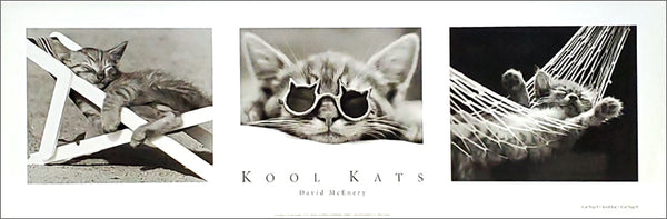 Kool Kats by David McEnery Black-and-White Cat Photography Triptych Poster - GDF 2003