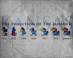 "Kansas University ""Evolution of the Jayhawk"" Historic Poster Print - ProGraphs Inc"
