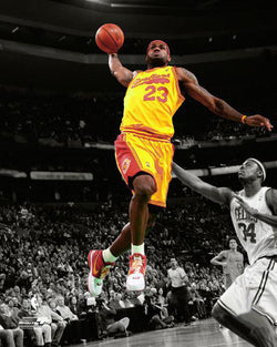 "LeBron James ""Spotlight"" (2009) Cleveland Cavaliers Premium Poster - Photofile 16x20"