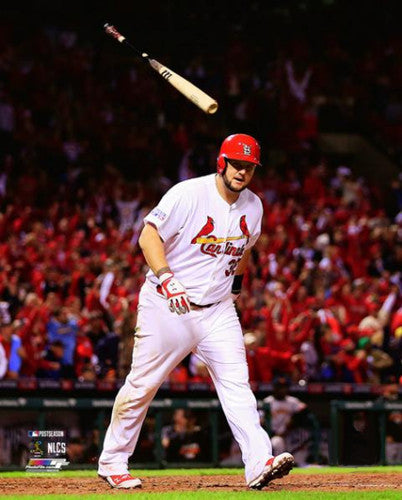"Matt Adams ""Goodbye"" St. Louis Cardinals Premium Poster Print (2014) - Photofile 16x20"