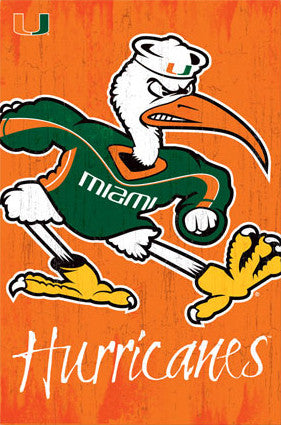University of Miami Hurricanes Sebastian-Ibis Official NCAA Team Logo Poster - Trends International