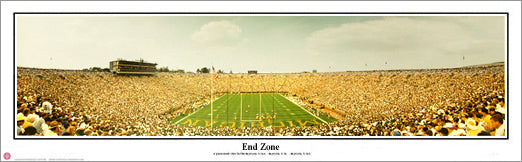"Michigan Stadium ""End Zone"" (1996) - Everlasting Images"