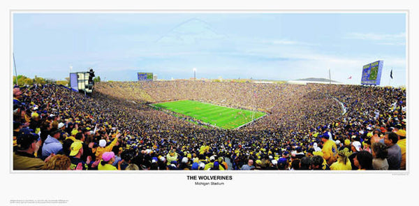 """The Wolverines"" (U. Michigan Football) - Sports Photos Inc."