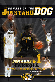 "DeMarre Carroll ""Junkyard Dog"" (Missouri 2009) - ProGraphs"