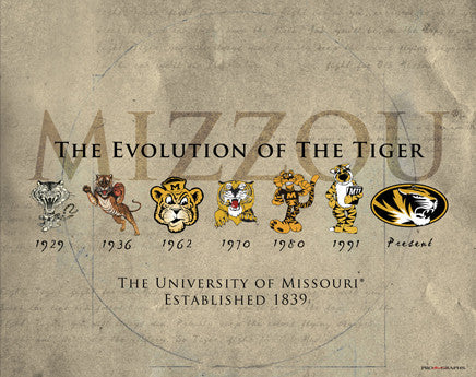 "University of Missouri ""Evolution of the Tiger"" Historic Poster Print - ProGraphs Inc."