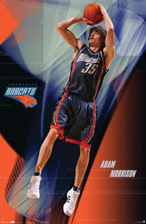 "Adam Morrison ""Action"" Charlotte Bobcats NBA Poster - Costacos 2007"