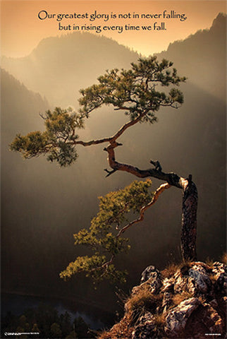 "Pine Tree on Mt. Sokolica ""Rising When We Fall"" Motivational Poster - PosterService Inc."