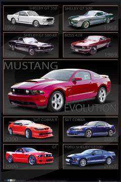 Ford Shelby Mustang Evolution (1966-2010) Classic Cars Poster - GB Eye