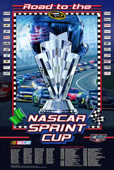 NASCAR Sprint Cup 2008 Official Poster - Action Images 2008