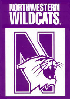 Northwestern Wildcats Premium Banner - BSI Products