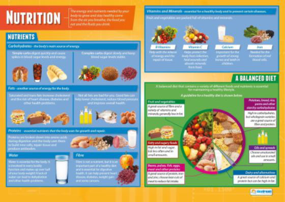 The Basics of NUTRITION Physical Education Fitness Center Wall Chart Poster - PosterFit