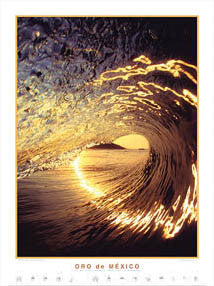 "Surfing ""Oro de Mexico"" Poster Print - Creation Captured"