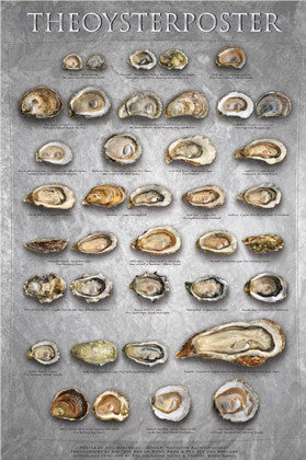 The Oyster Poster Wall Chart by Bill Marinelli - American Image