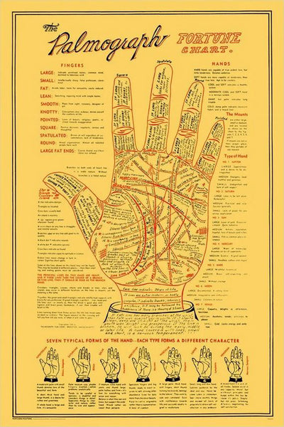 "Palm Reading ""The Palmograph Fortune Chart"" Human Hand Anatomy Poster - Popcorn Posters Inc."