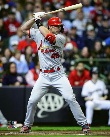 "Paul Goldschmidt ""Power Bird"" St. Louis Cardinals Premium MLB Poster Print - Photofile 16x20"