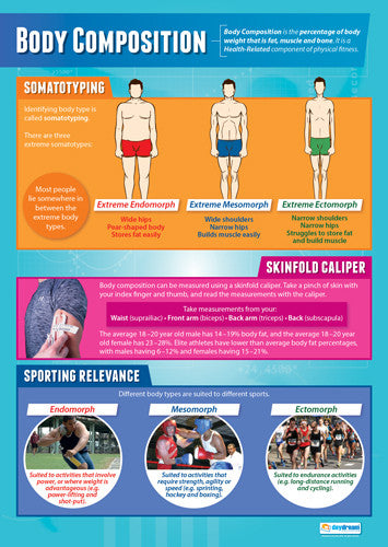 Physical Education BODY COMPOSITION Professional Fitness Wall Chart Poster - Posterfit