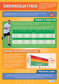 Physical Education CARDIOVASCULAR Professional Fitness Wall Chart Poster - Posterfit