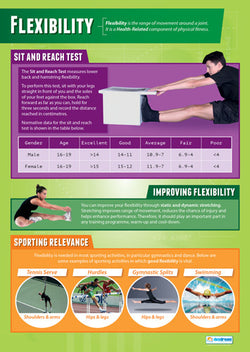 Physical Education FLEXIBILITY Professional Fitness Wall Chart Poster - Posterfit