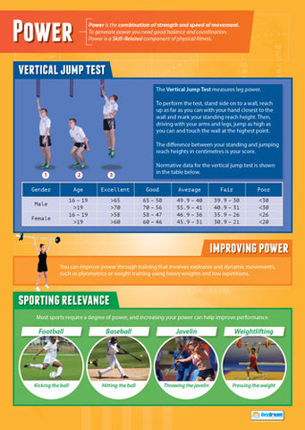 Physical Education POWER Professional Fitness Wall Chart Poster - Posterfit