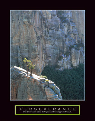 "Lone Pinyon Tree ""Perseverance"" Motivational Poster - Front Line"