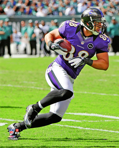 "Dennis Pitta ""Ravens Action"" (2012) Poster Print - Photofile 16x20"