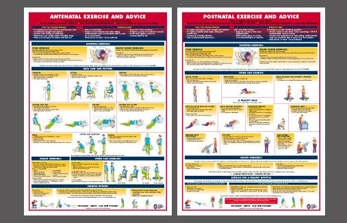 Pregnancy Fitness 2-Poster Set (Antenatal and Postnatal Exercise and Advice Wall Charts) - Chartex Ltd.