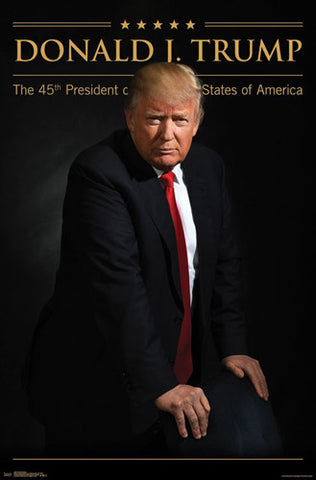 President Donald J. Trump 45th President of the United States Power Portrait Poster - Trends 2017