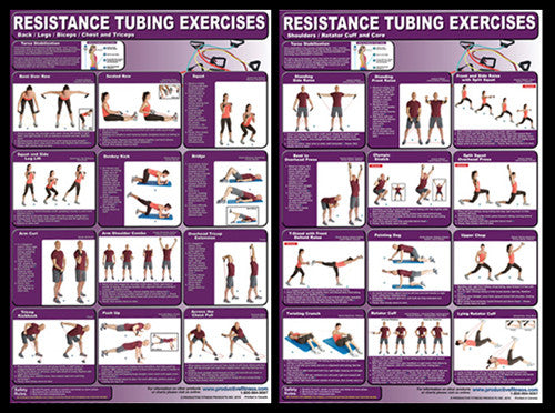 Resistance Tubing Exercises Professional Fitness Wall Charts 2-Poster Combo