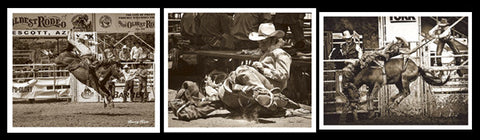 Rodeo Photography by Barry Hart 3-Poster Set - McGaw Graphics 2014