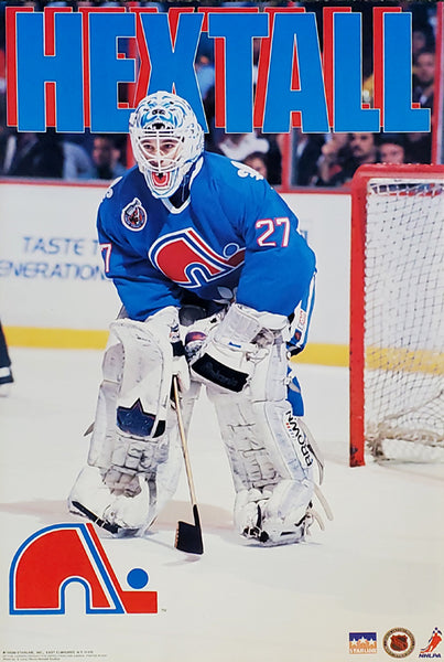 "Ron Hextall ""Action"" Quebec Nordiques NHL Hockey Poster - Starline 1993"