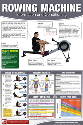 Rowing Machine Professional Gym Fitness Wall Chart Poster (Male Edition) - Productive Fitness
