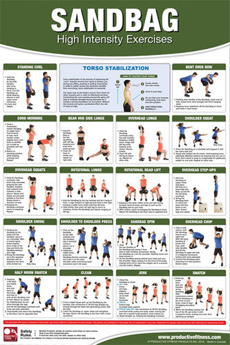 Sandbags High-Intensity Exercises Professional Fitness Wall Chart Poster - Productive Fitness
