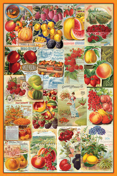 Vintage Seed Catalog Covers Fruit Farming Posters Collage (18 Reproductions) Poster - Eurographics Inc.